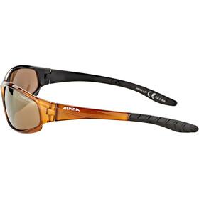 Alpina Wylder Gafas, brown transparent/gold mirror